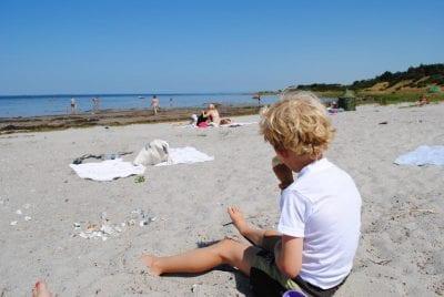 Nyd sommeren på Orø - CampOne Holbæk Fjord